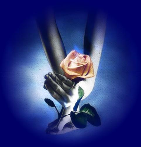 A une fleur poésie Main-rose