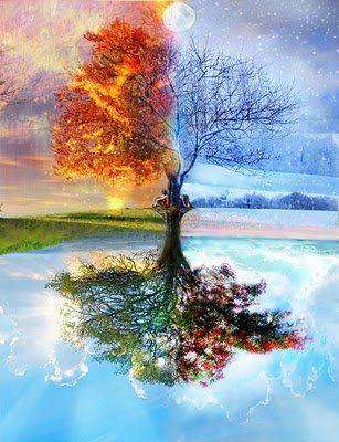 poésies choisies pour vous Quatre-saisons